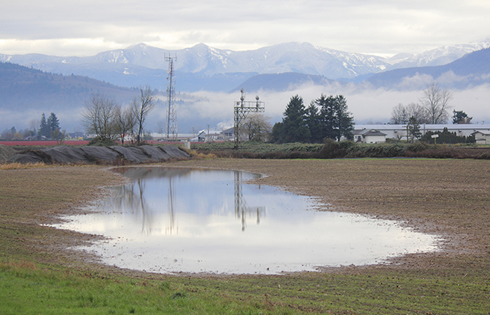 Monticello Indiana Auto Insurance Farm Insurance